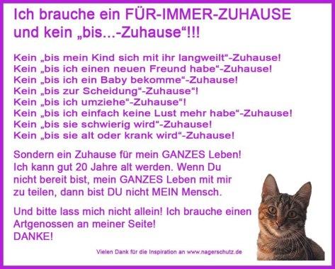 Haustiere anschaffen, Haustiere abschaffen? Quelle: Facebook